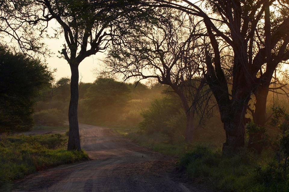Partir dans un pays d'aventure avérée en terre africaine